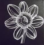 B/W Flower Series 2 by Wilma Seston, Drawing, Acrylic on canvas