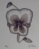 B/W Flower Series 7 by Wilma Seston, Drawing, Pen on Paper